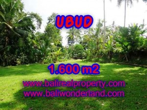 Magnificent LAND FOR SALE IN UBUD TJUB416