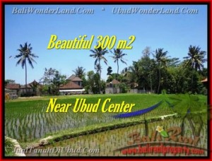 FOR SALE Affordable 300 m2 LAND IN UBUD TJUB436