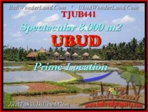 FOR SALE Beautiful LAND IN Sentral Ubud BALI TJUB441