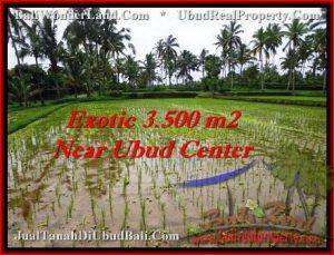LAND IN Ubud Tegalalang BALI FOR SALE TJUB477