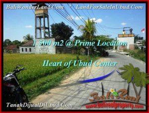Exotic PROPERTY Sentral Ubud 1,500 m2 LAND FOR SALE TJUB508