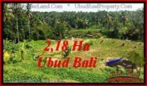 Exotic PROPERTY 21,800 m2 LAND FOR SALE IN Sentral Ubud TJUB546