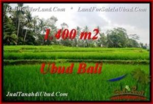 Beautiful 1,400 m2 LAND SALE IN UBUD BALI TJUB539
