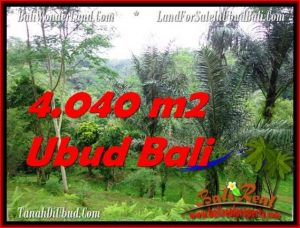 Affordable PROPERTY 4,040 m2 LAND IN Ubud Tegalalang FOR SALE TJUB555