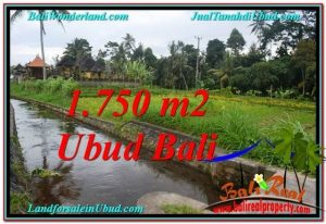 Exotic LAND SALE IN Ubud Tampak Siring BALI TJUB557