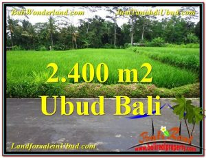 Exotic 2,800 m2 LAND IN UBUD BALI FOR SALE TJUB563