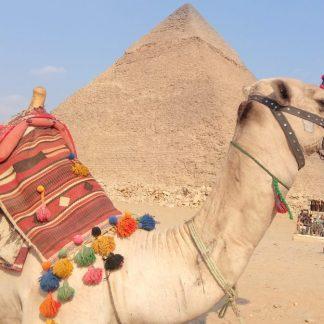 Экскурсия в Каир из Шарм Эль-Шейха : фото пирамиды Микерина