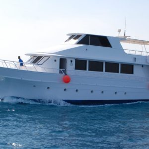 Excursion snorkeling Ras Mohammed from Sharm El-Sheikh