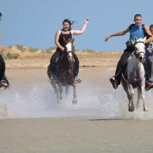 Ausritt zu Pferd in Hurghada