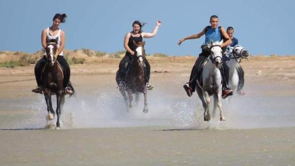 Excursion sea horseback riding in Hurghada