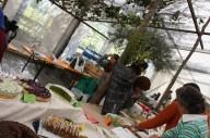 Kräuterpädagoginnen und interessierte BesucherInnen