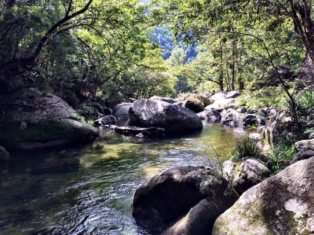 Mossman Gorge Queensland Australia