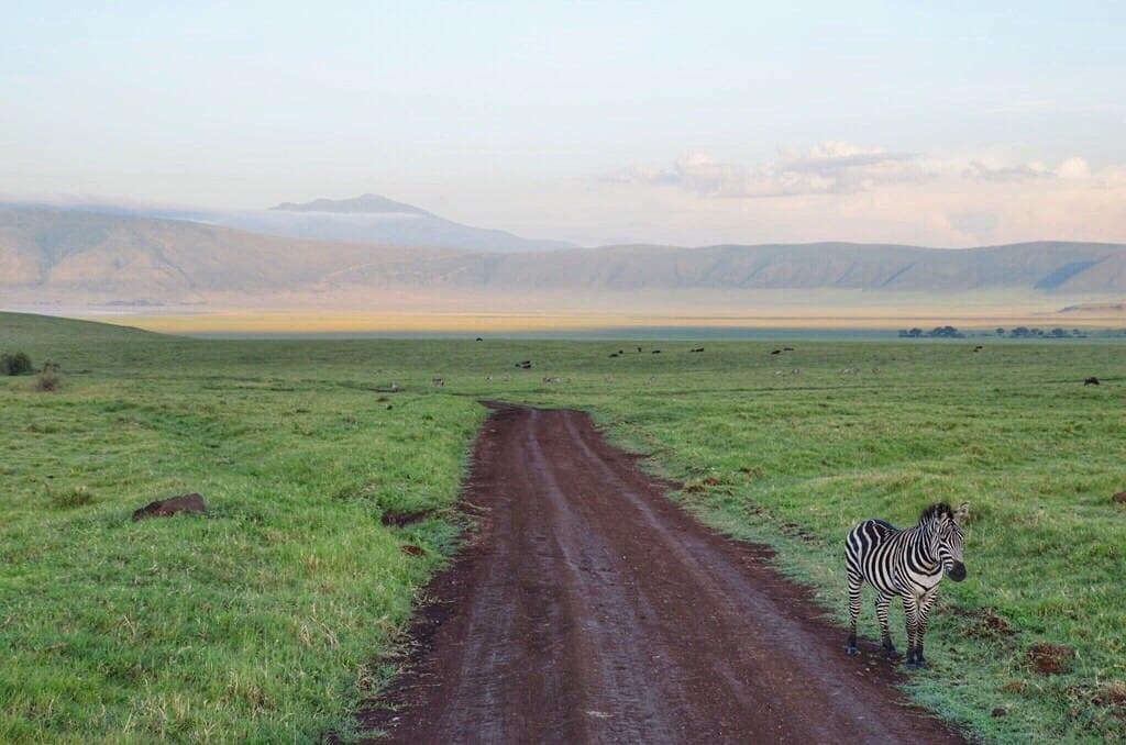 Ngorongoro Crater Sunrise Tanzania