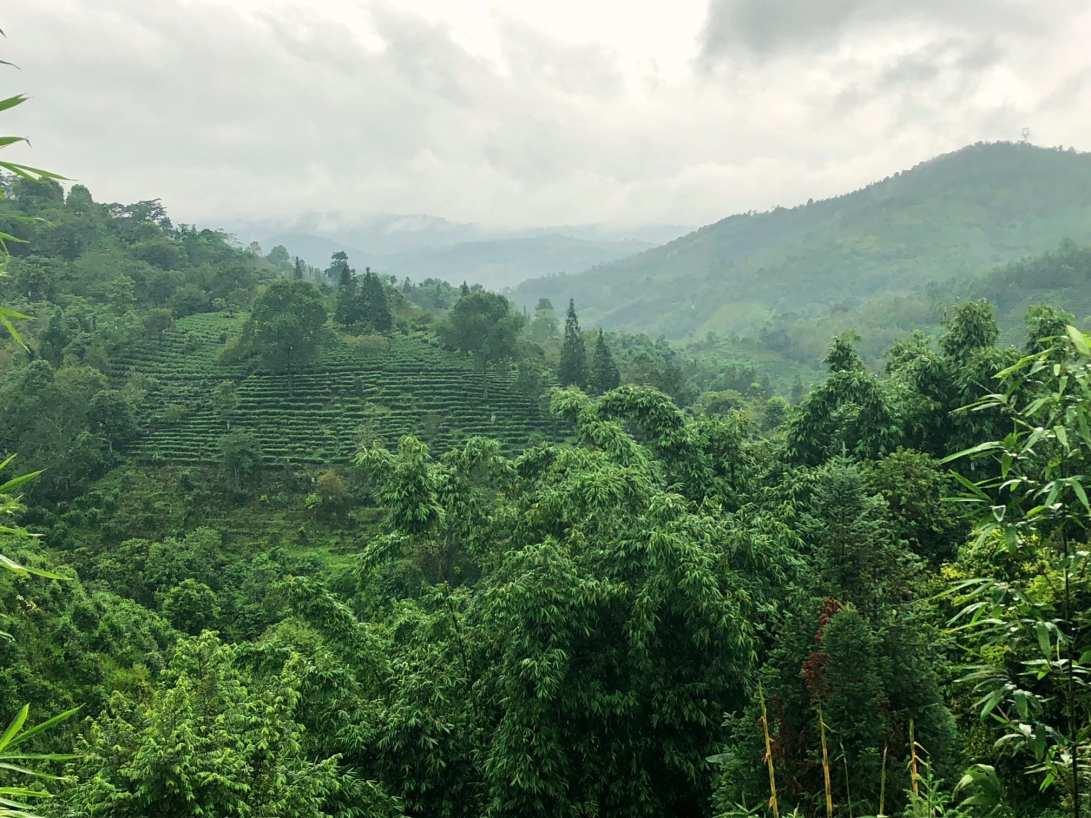 Yunnan China