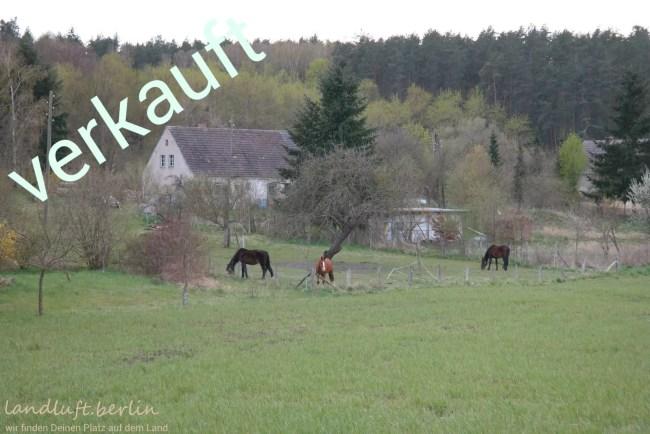 Bauernhaus in der Uckermark zu verkaufen