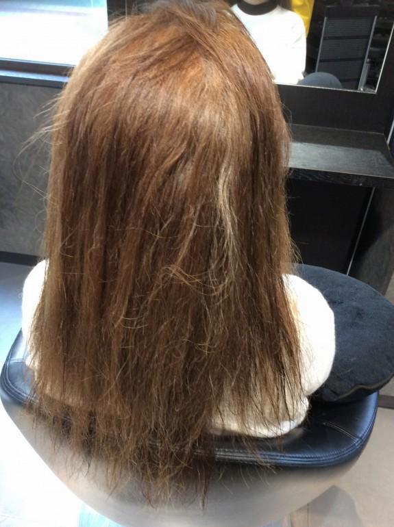 白髪をブリーチしたロングヘアーの女性を背後から撮った画像です。毛先の方は髪の毛がもうちぎれそうな状態です。弱い髪の毛ですので、一般の美容室では施術不可能な髪の毛ではないでしょうか。細くて乾燥していて櫛を入れただけで切れそうです。