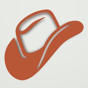 cowboyhat4