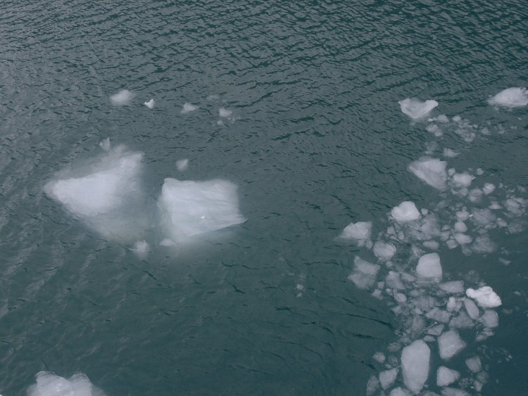 Ice chunks (growlers) from Portage Glacier