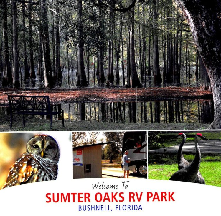 Sumter Oaks RV Park--our new legal domicile in Florida