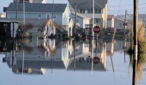 Affordable Flood Insurance Brandon and Tampa Florida