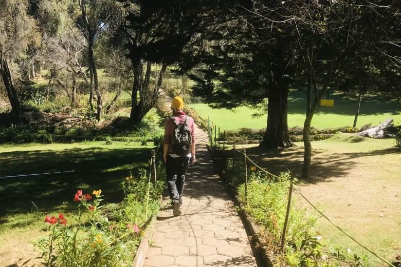 Arboretum tree garden near Fern Hill, Ooty, Tamil Nadu