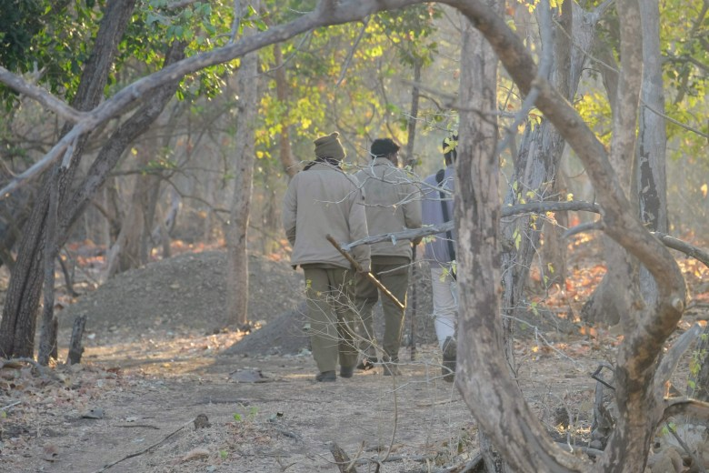 Spotters looking for lions at Gir National Park, Gujarat