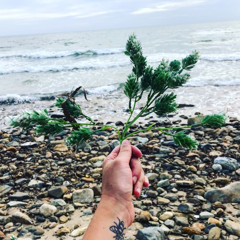 Plastic tree on Lonely Beach, Koh Chang, Thailand