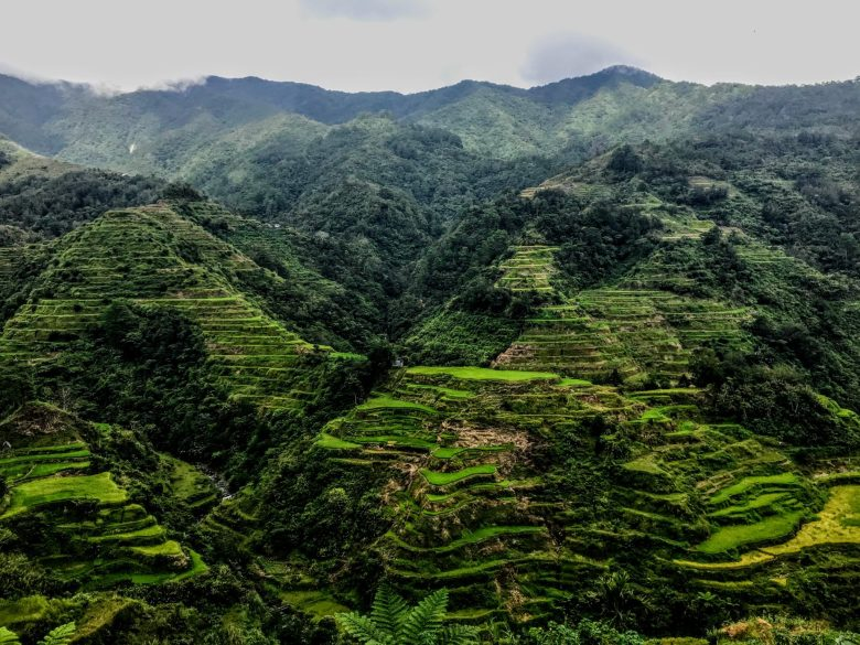 UNESCO-listed Ifugao rice terraces in North Luzon