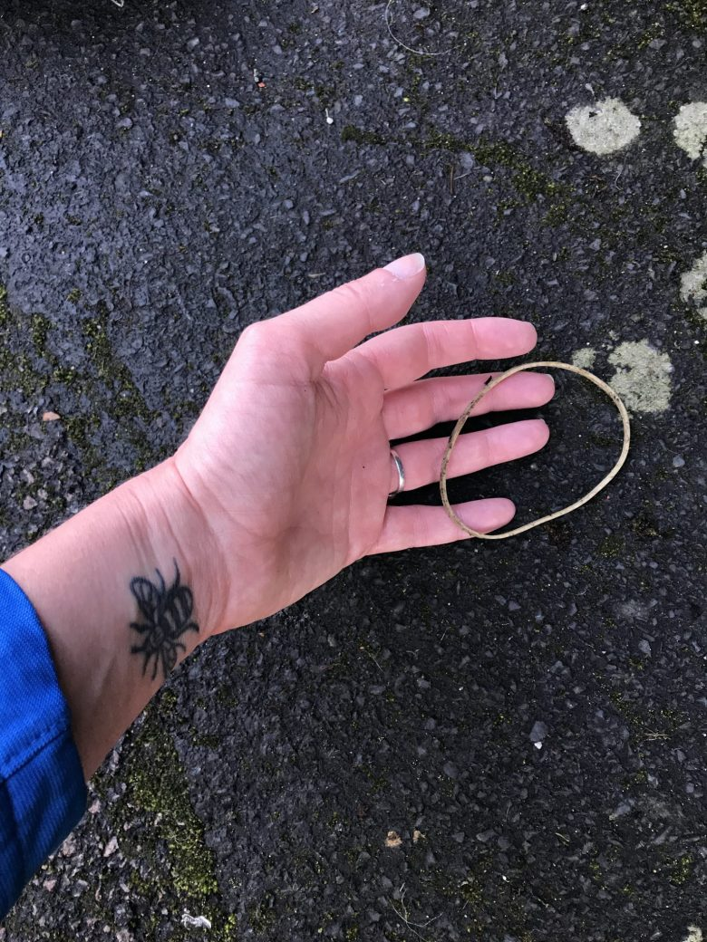 Elastic band on the ground