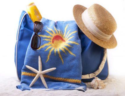Best travel purse 2017