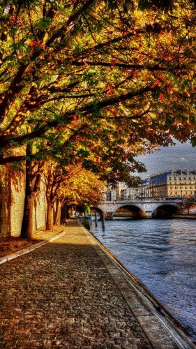 The banks of the river Seine in France is displayed here