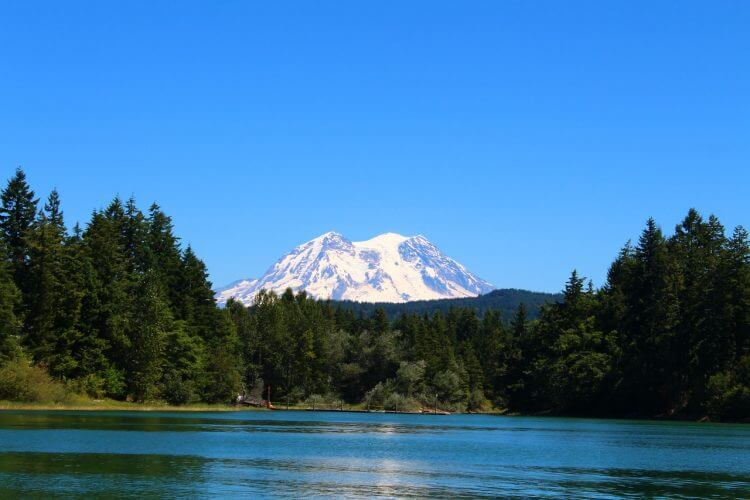Mount Rainier is shown in this picture