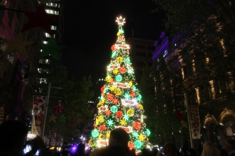 This picture shows the christmas celebrations at martins place