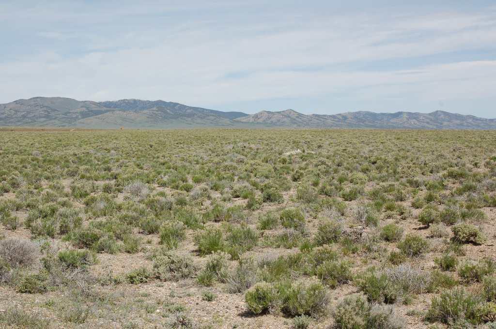 Montello Nevada Land For Sale