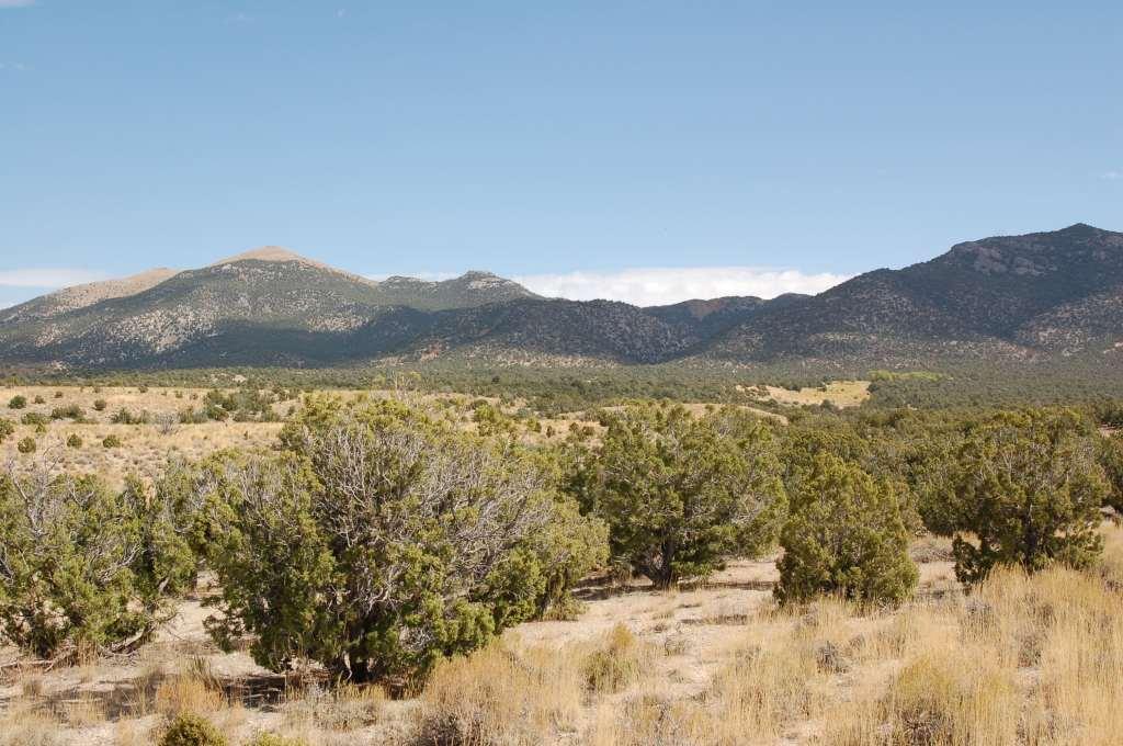 Land for Sale in Montello Nevada