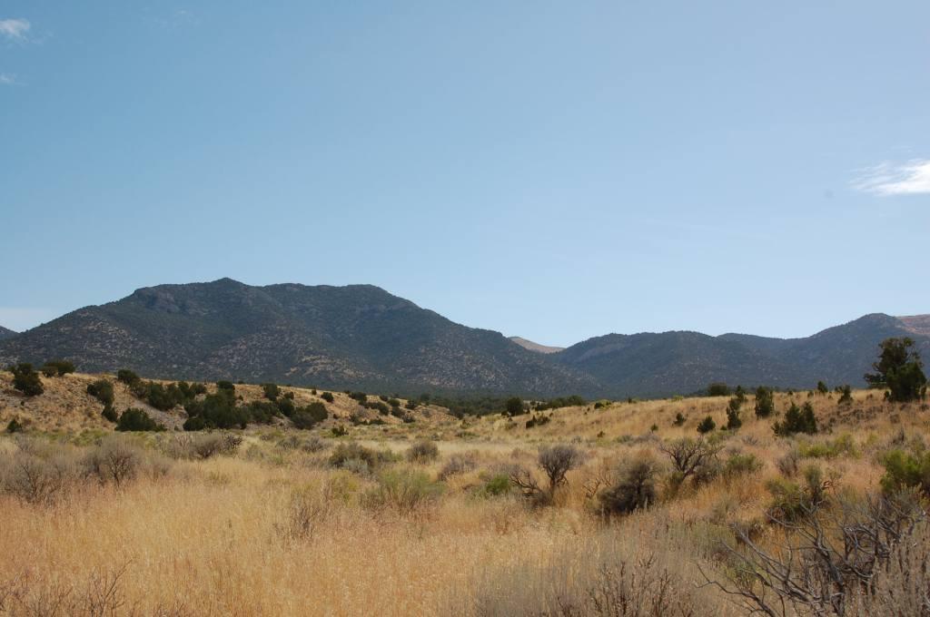 40 acres in Nevada
