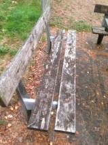I skogen bakom bygdegården fanns en lekplats lite underligt placerad. Bänkarna där var inte heller så skojjiga.