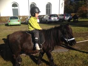 Självklart fanns även ponnyridning, med ponny i utmärkt storlek för dagisbarn.
