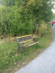 Blankaholm och Solstadsströms intresseförening har ställt ut parkbänkar runt om i samhället där trötta ben kan vila en stund.