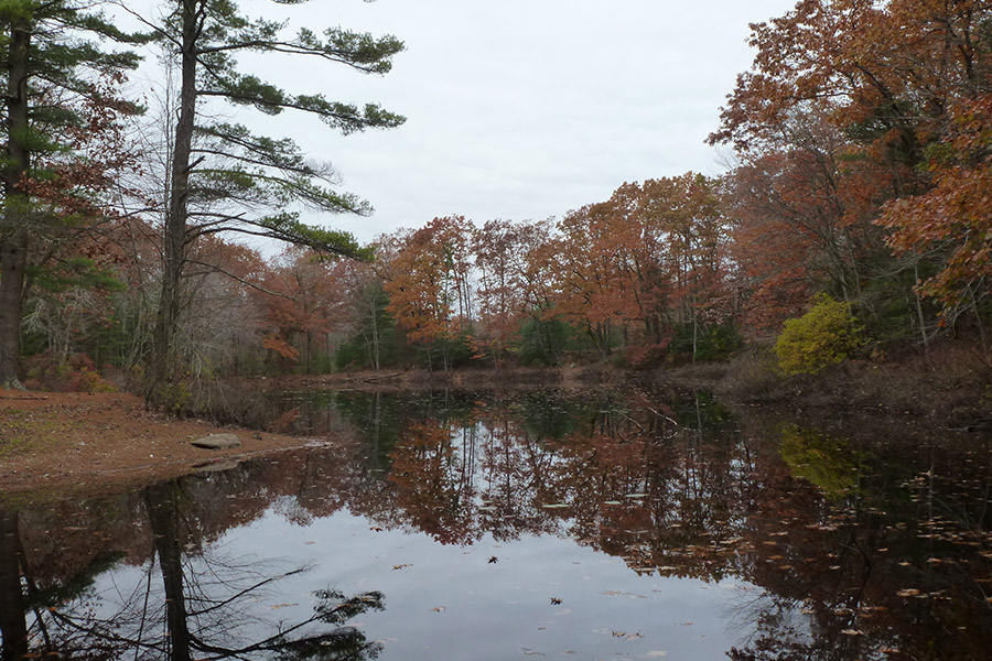 Duck Pond Trail: Burrillville, Rhode Island