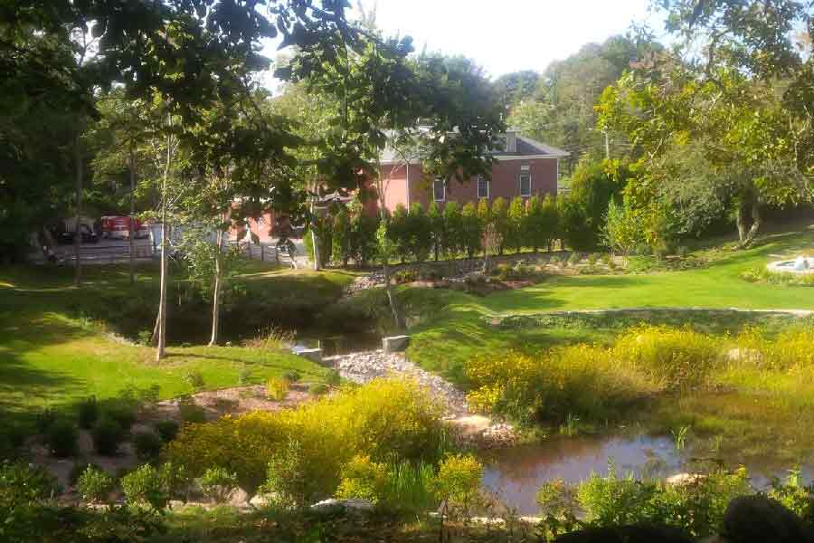 Wetland Mitigation: Westerly, Rhode Island
