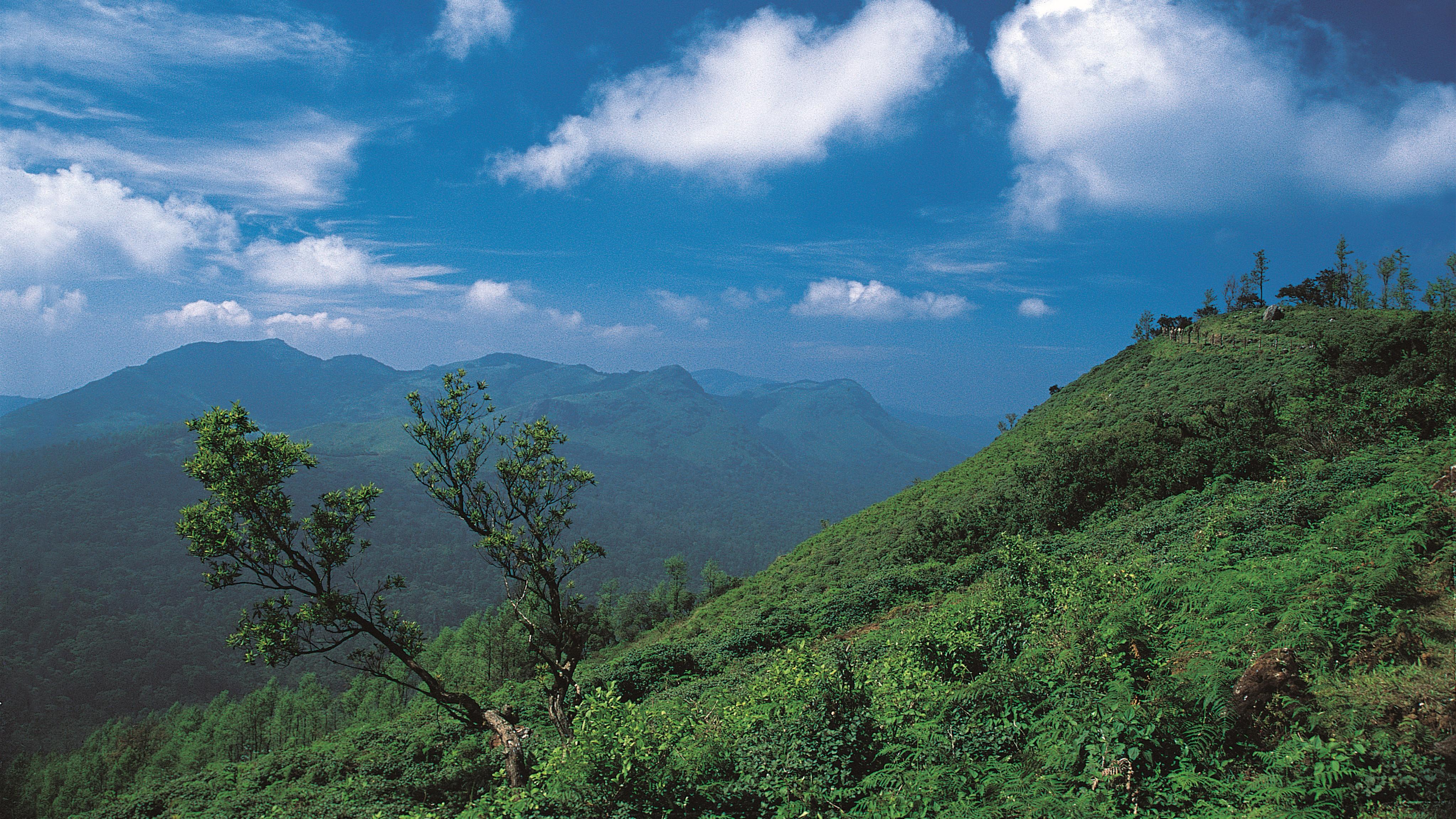 Coorg, Karnataka 16-9