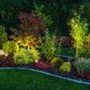 landscape lighting illuminating garden with LED lights at night