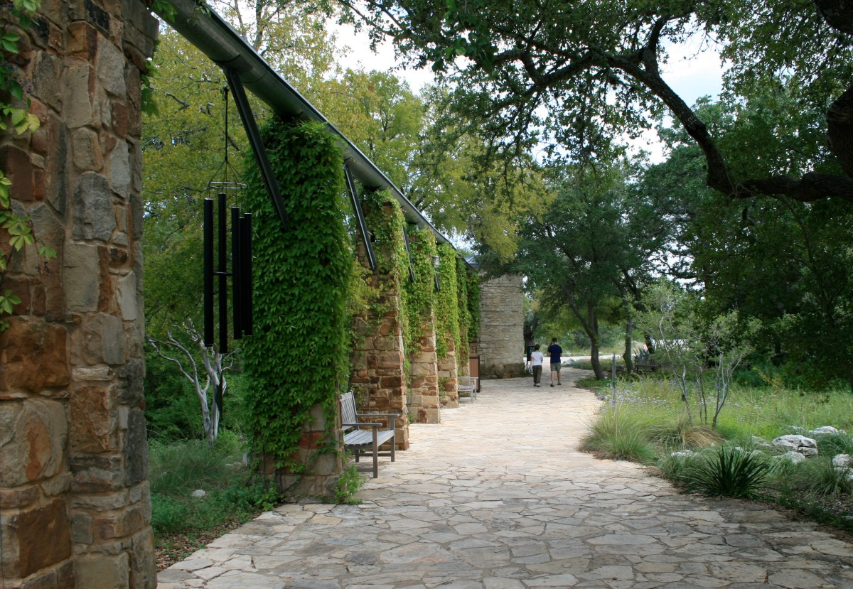 The Lady Bird Johnson Wildflower Center: A Legacy of Beauty