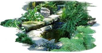 Contact, Contact, Landscape Pros | Landscape Design & Landscaping Services Manassas, VA