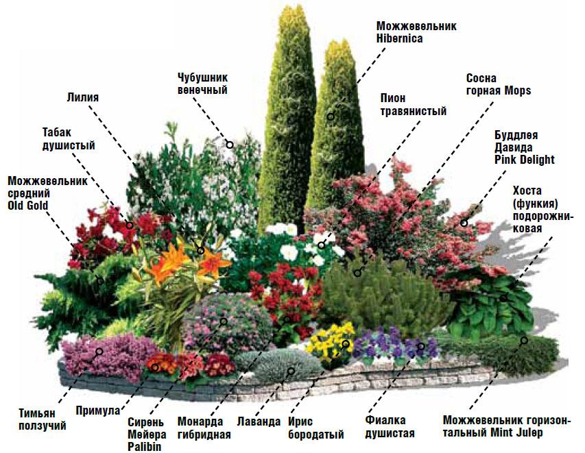 дорогие устройства схемы цветников для начинающих фото дословно переводится