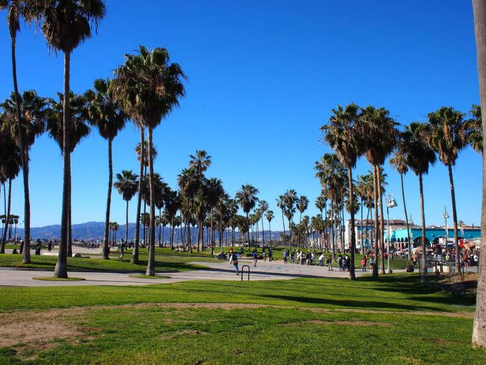 The skate parks and palm trees of Venice Beach.