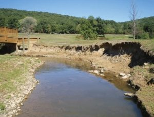 Bedford Springs Resort - Stream & Floodplain Restoration - Before