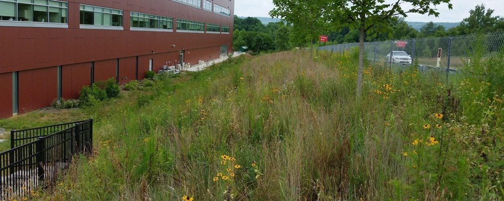 Penn Medicine - Valley Forge Facility