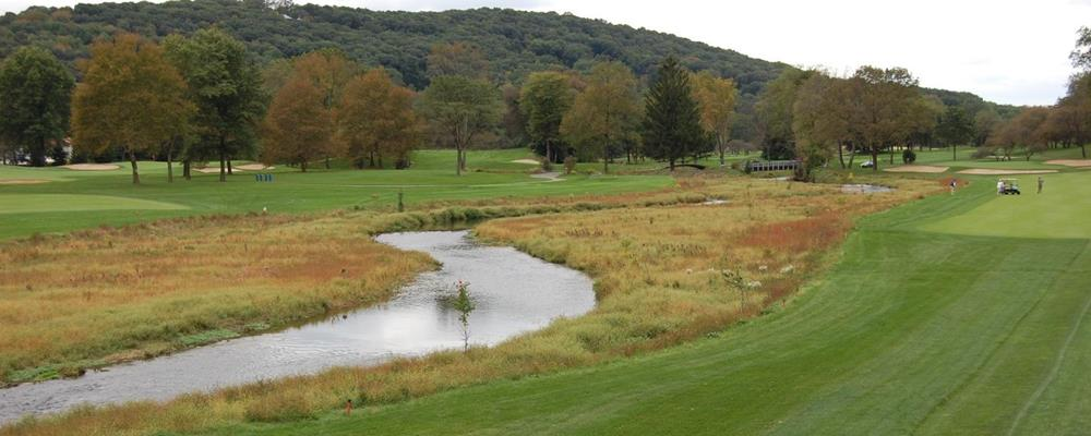 Controlling Invasive Plants in Riparian Areas